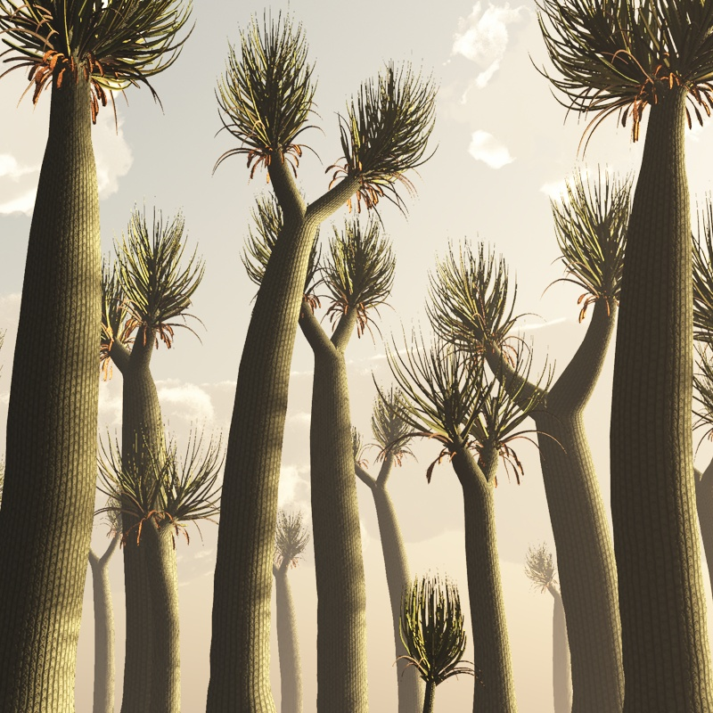 More Than 570 Plants Have Gone Extinct in Last 250 Years, Study Finds
