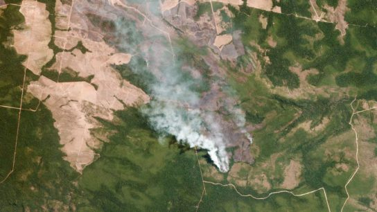 Raging Wildfires in the Amazon Send a Planetary Warning