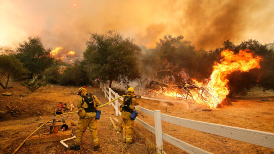 California's Wildfires Increase Pro-Climate Political Participation