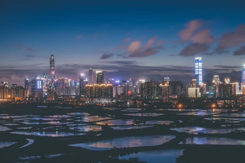 Shenzhen Skyscrapers Threaten Migratory Bird Populations in Hong Kong Wetland