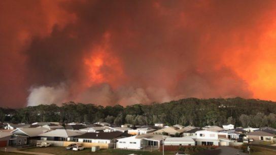 A Crisis of the Australia Bushfires: A Government's Failure