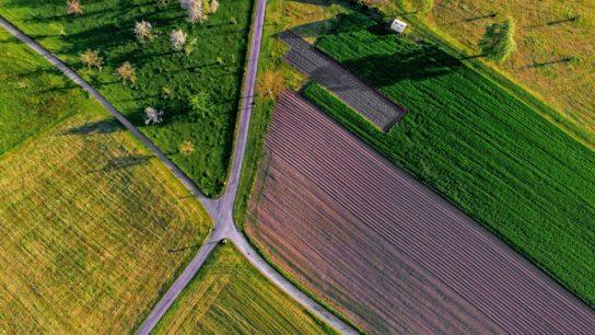 The Monsanto Effect: Poisoning Latin America