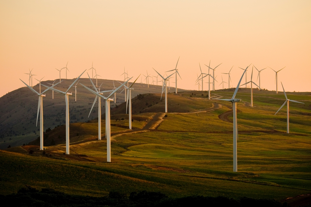 What the Future of Renewable Energy Looks Like
