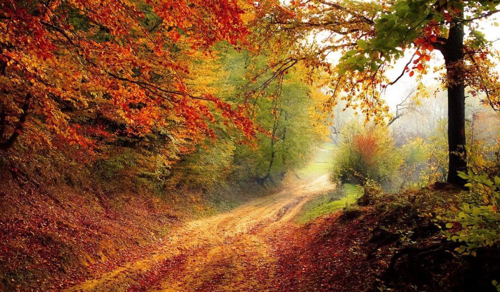 Using Nature as a Prescription