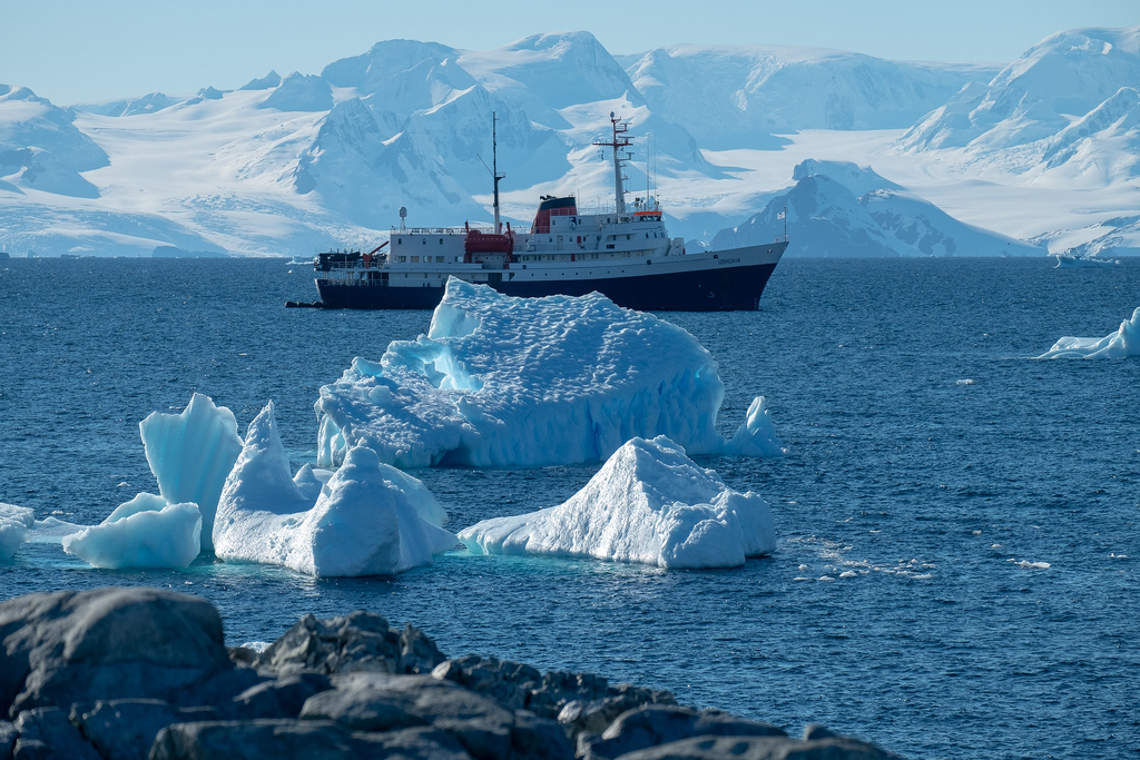 Antarctica Heatwave: When, Why and What it Means