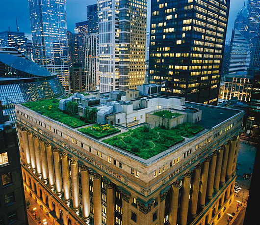 Chicago City Hall in Chicago green roofs