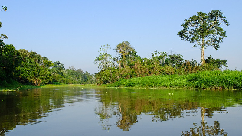 The Amazon is at Risk of Drying Out