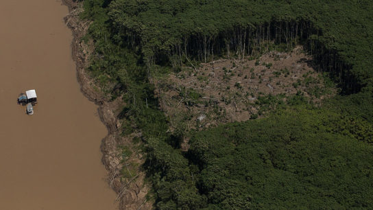 Brazil Says No Halt to Amazon Protections, Making a U-Turn On an Earlier Decision
