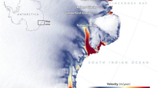 Disequilibrium in Antarctica