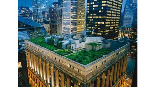 Green Walls in an Increasingly Urban World