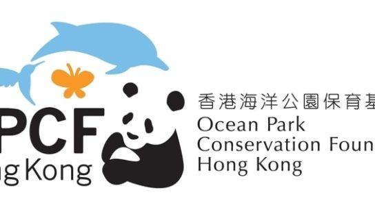 Ocean Park Conservation Foundation's Funding Spotlights Marine Conservation and Illegal Wildlife Trade