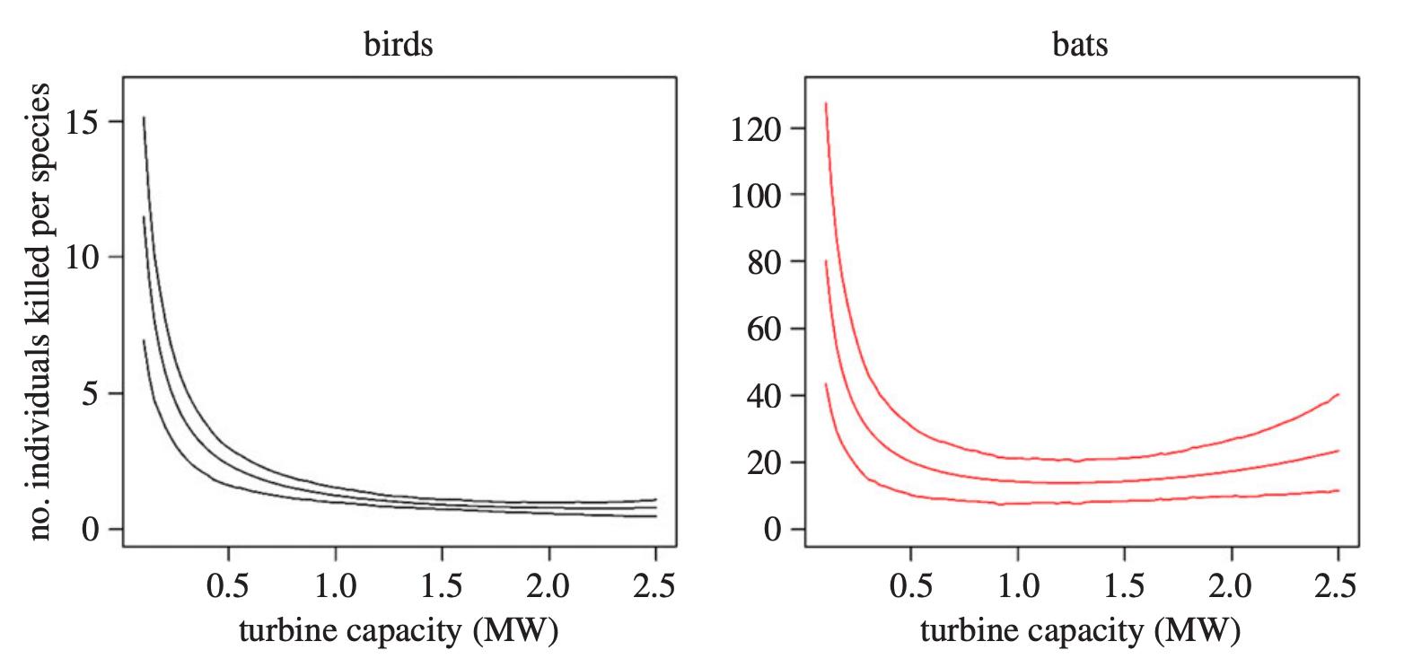 birds bats and wind turbines