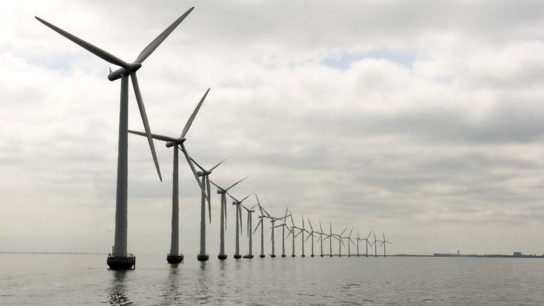 Offshore Wind Farms: An Ecological Problem or Environmental Solution?