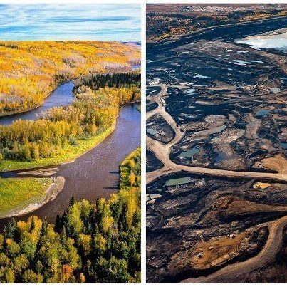 oil sands boreal forest before and after