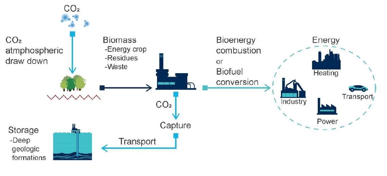 bio energy carbon capture and storage BECCS