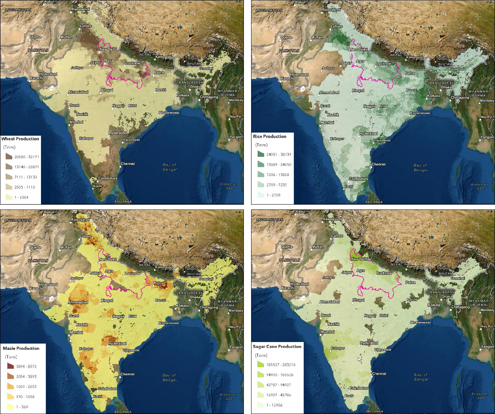 agriculture uttar pradesh food crops