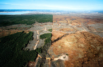 The Future of Canada's Oil Sands
