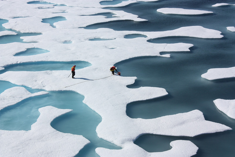 Arctic Sea Ice Has Yet to Freeze at Latest Date on Record