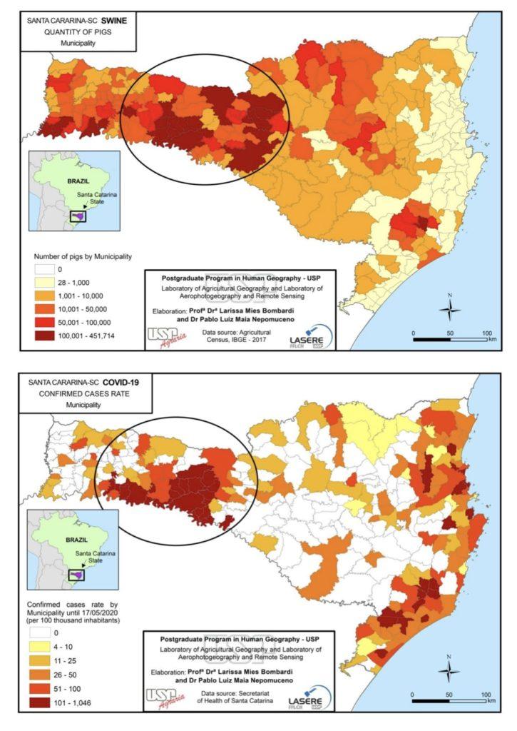 pig farming virus outbreaks