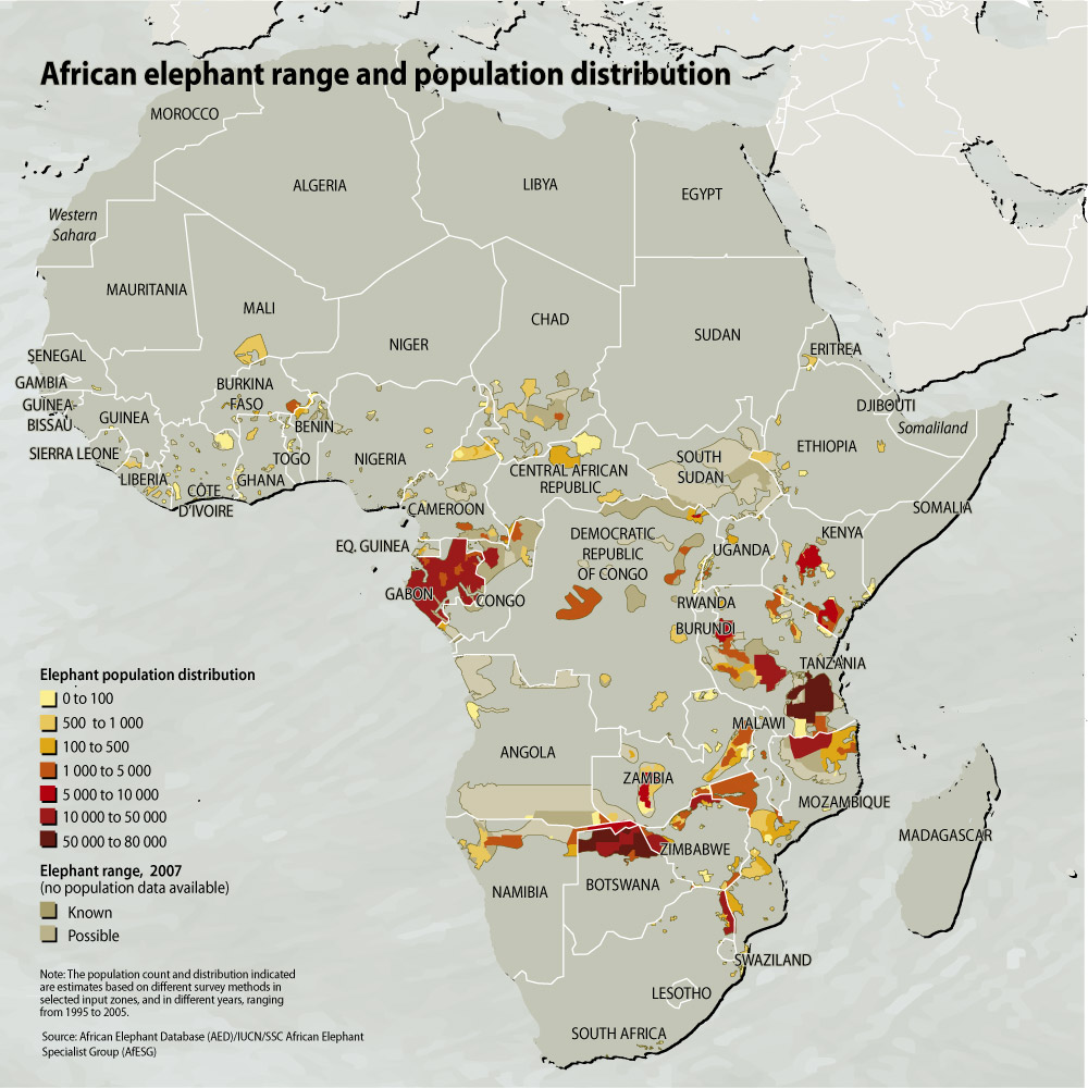 african elephant range and distribution