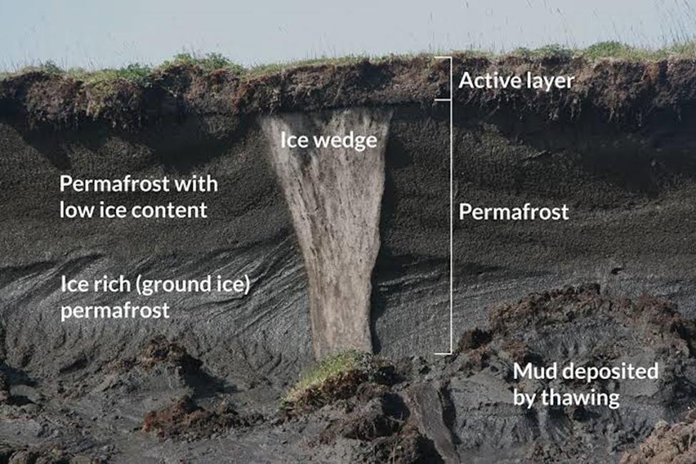 permafrost thaw explainer
