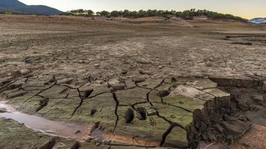 Liquid Nanoclay: Transforming Soil to Shape the Future of Farming
