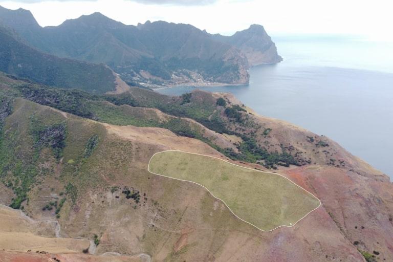 chile archipelago invasive species