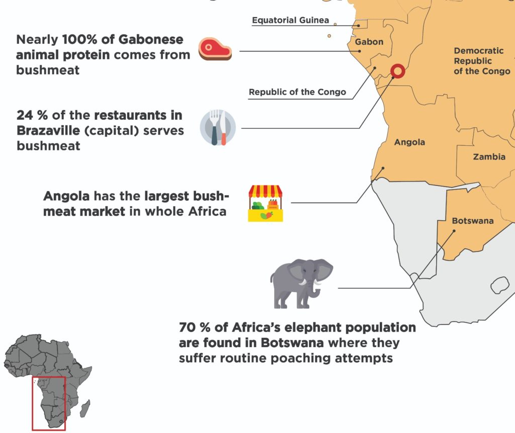 Africa poaching bush meat crisis facts and figures
