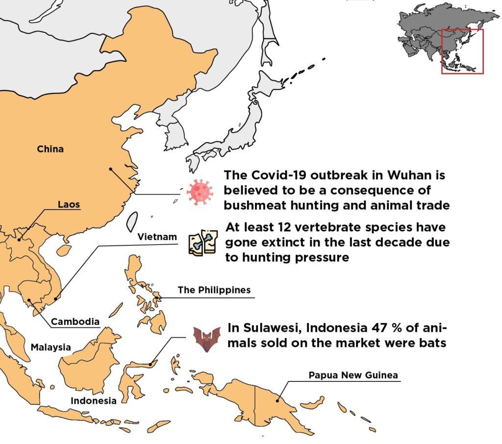 bushmeat covid 19 asia