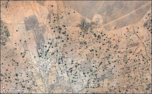 desertification remote sensing satellite imagery