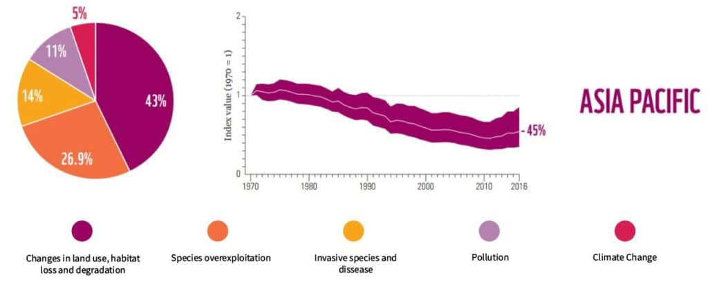 living planet report Asia pacific biodiversity loss