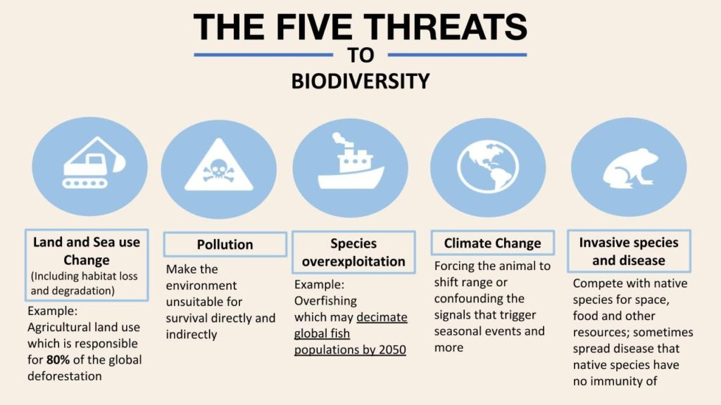 five threats to biodiversity living planet report 2020