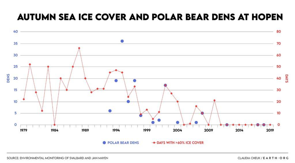 sea ice loss decline polar ber dens