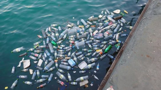 Ocean Acidification Linked to Plastic Pollution- Study
