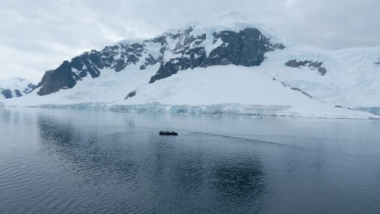 Antarctic Ice Melt Increasing Iron in the Oceans: What Does This Mean?