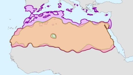 The Past, Present and Future of The Sahara Desert