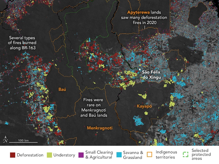 amazon fires fire deforestation 2020