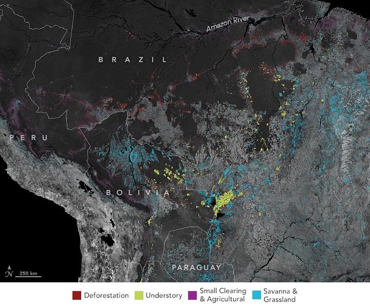 amazon deforestation fires fire 2020
