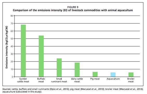emissions intensity livestock
