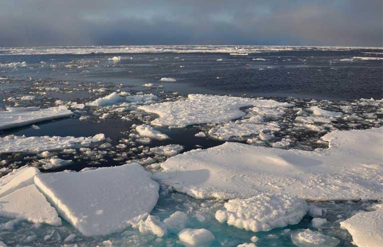As Arctic Sea Ice Hits Annual Maximum, Concern Grows Over Polar Ice Loss: Studies