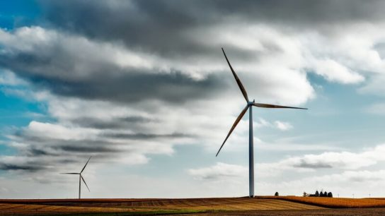 Top 5 Fastest-Growing Renewable Energy Sources Around the World