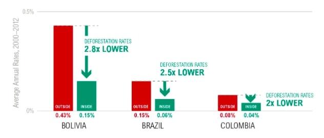 deforestation rates