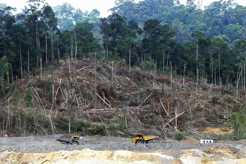 Illegal Coal Mine Tunnels Threaten a Village in Sumatra