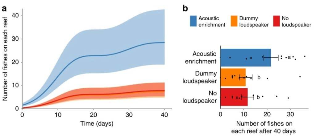 acoustic enrichment coral reefs