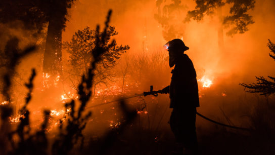 15 Worst Wildfires in US History
