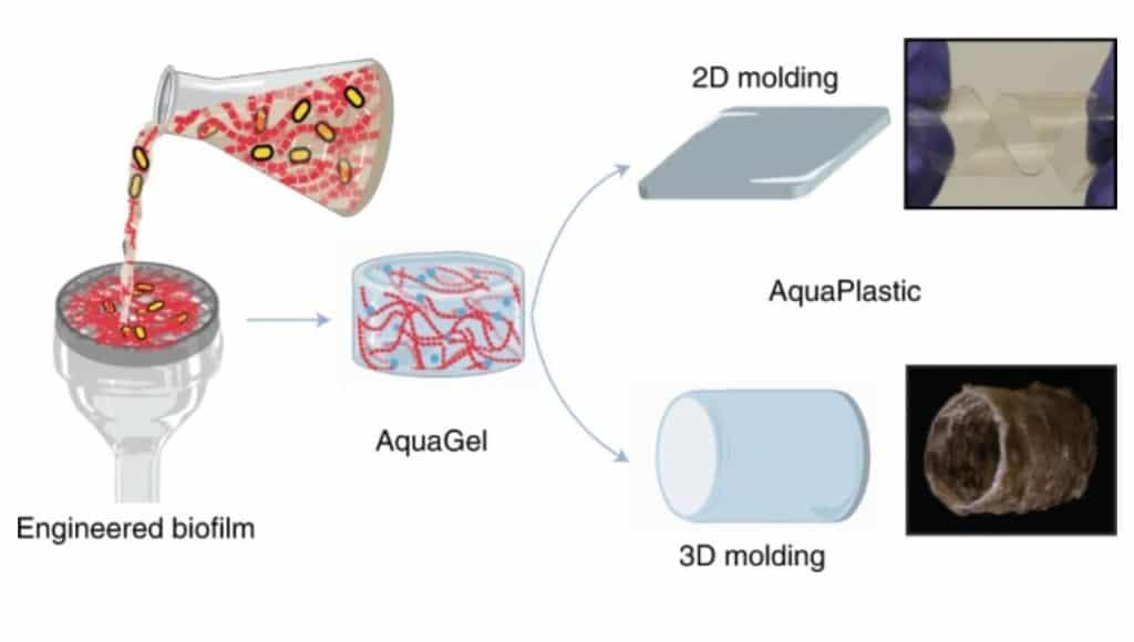 aquaplastic plastic alternative e. coli innovative solution