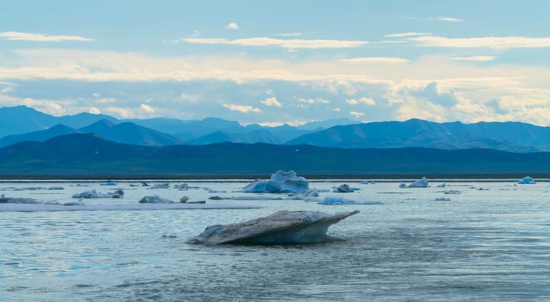 Biden Suspends Trump-Era Oil Drilling Leases in Arctic Wildlife Refuge
