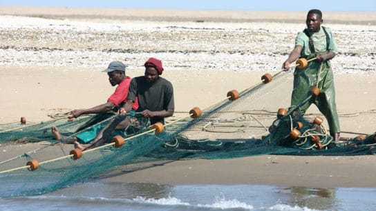Why Namibia's Marine Resource Act Considered One of The Most Successful Fisheries Management Policy In The World