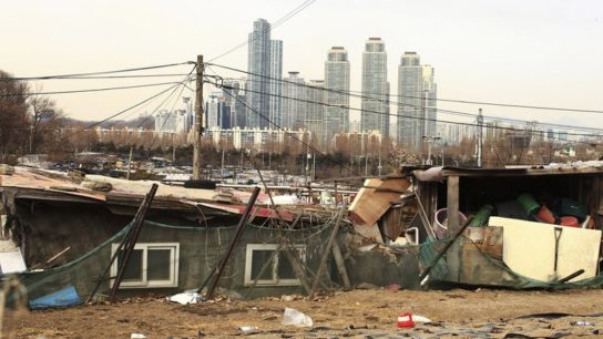 Is Inequality Destroying the Environment?