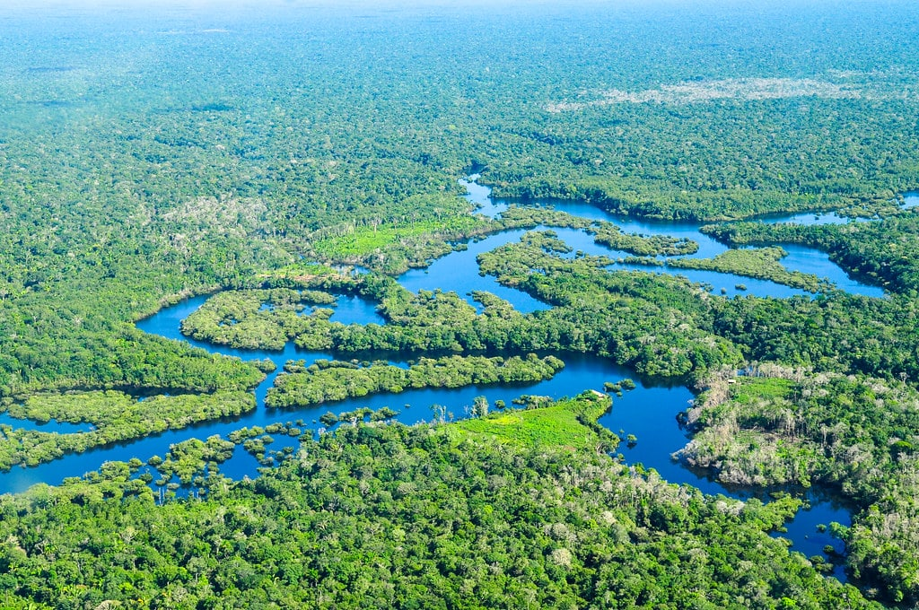 Amazon Rainforest Is Now A Source of CO2 Instead Of Absorbing It